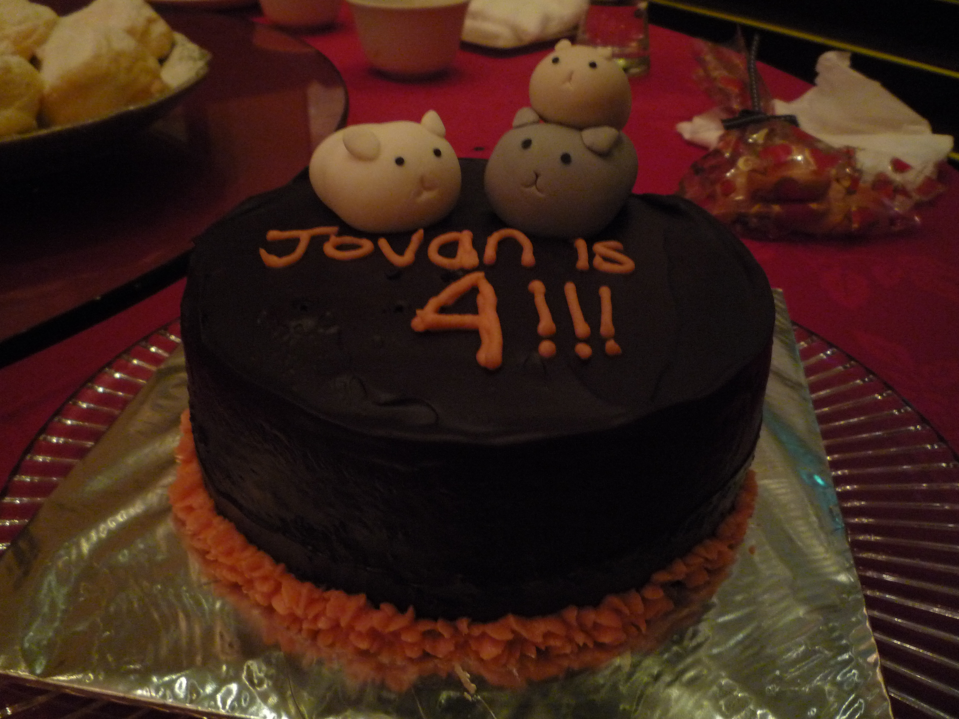 3d Birthday Cake Hunny Bunch N Co